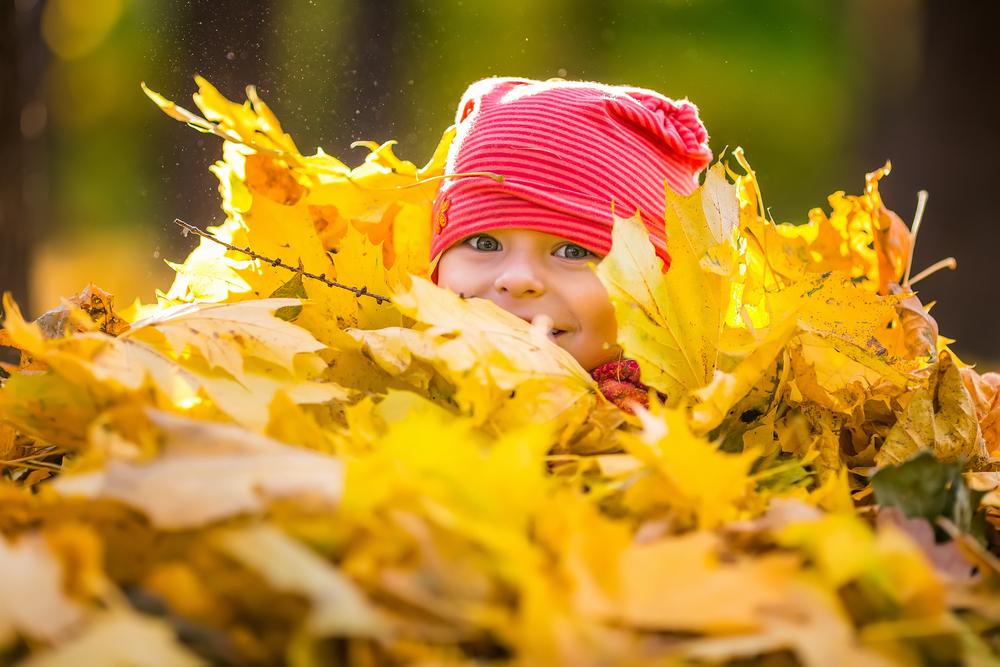 10 hyggelige ting å gjøre om høsten