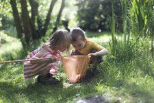 6 tips som gjør fakta-læringen gøy